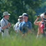Observation dans les champs à Brébeuf © Richard Lavertue